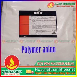 BỘT PAM POLYMER ANION HCVMTH